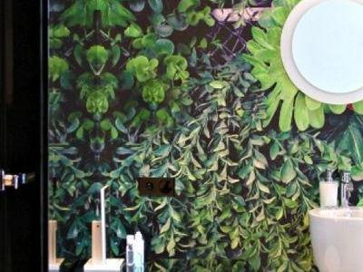 rośliny w salonie optycznym 4
