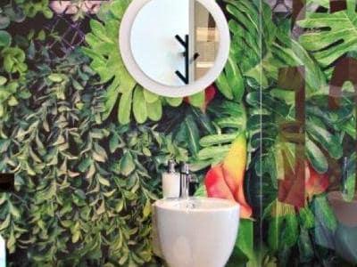 rośliny w salonie optycznym 3